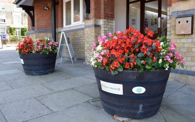 Blooming Marvellous Tubs